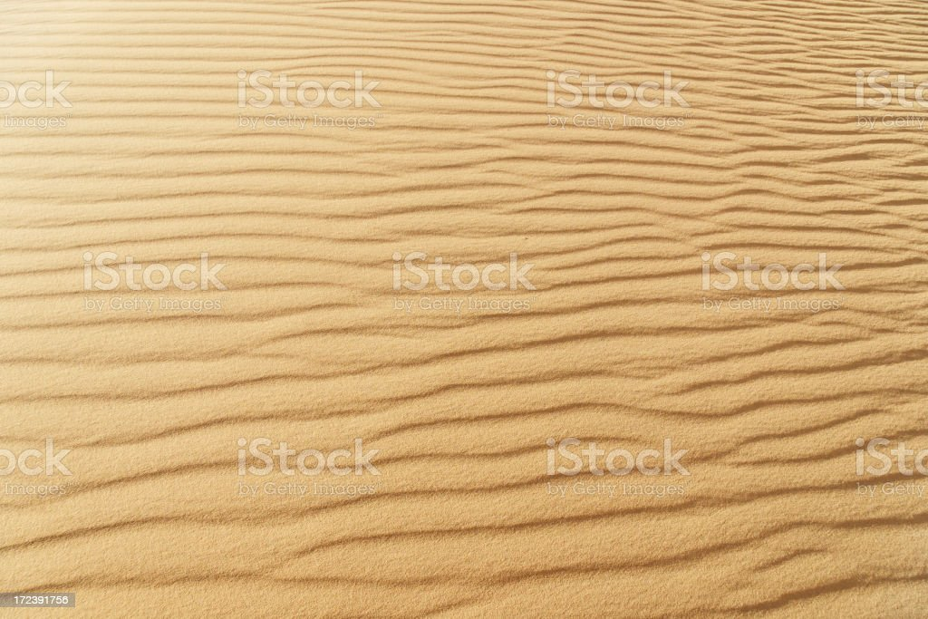 Wavy ripples on the tan-colored sands of the Sahara Desert royalty-free stock photo