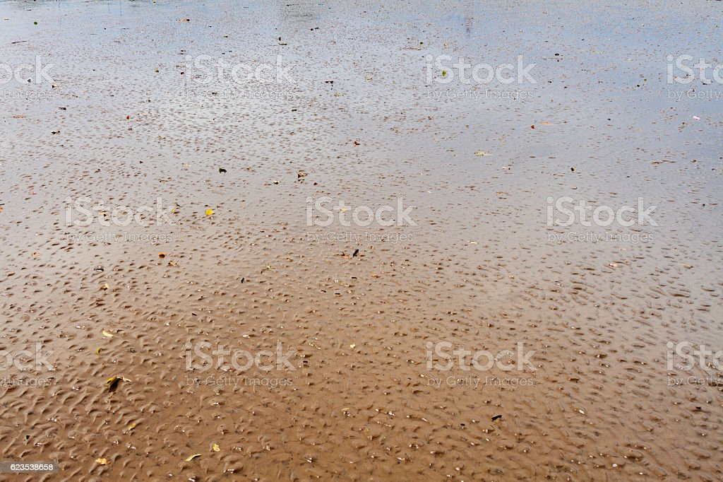 Wavy sand on the beach after the low tide stock photo