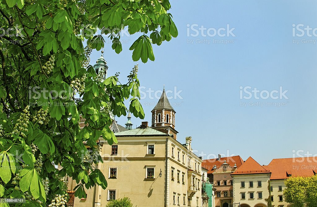 Wawel castle. royalty-free stock photo