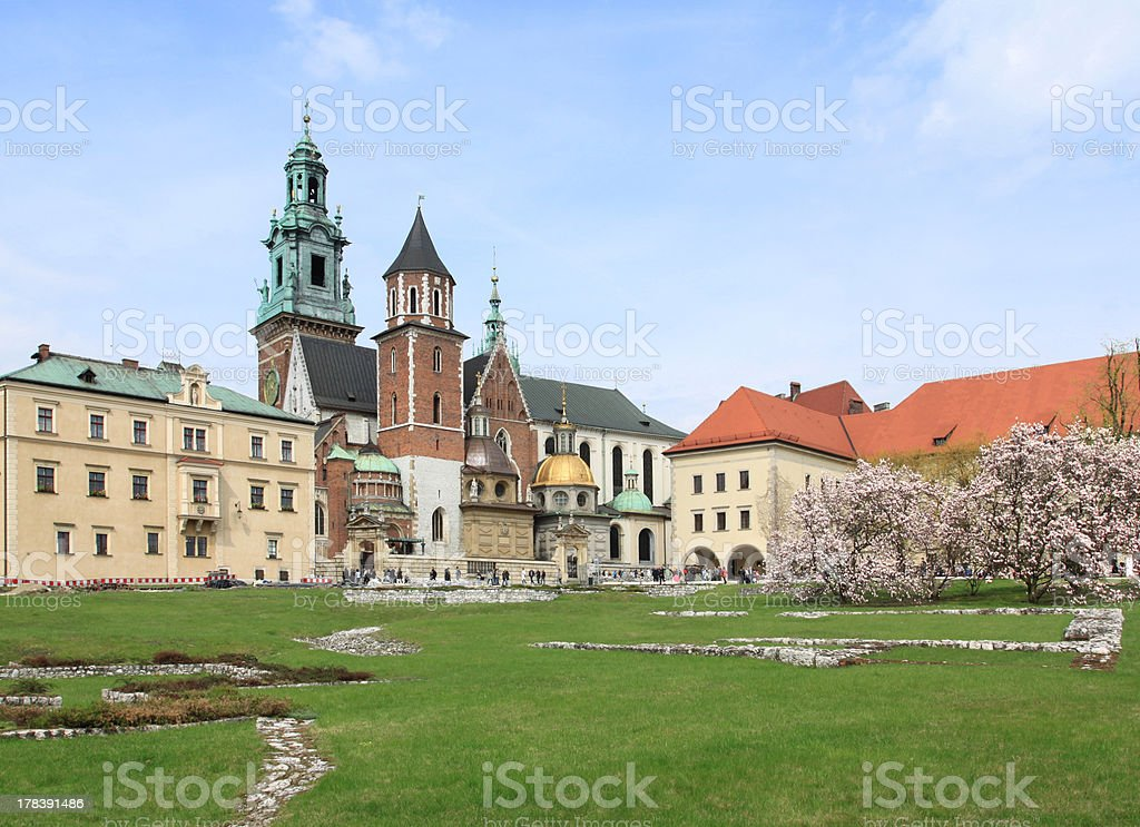 Wawel in Cracow royalty-free stock photo