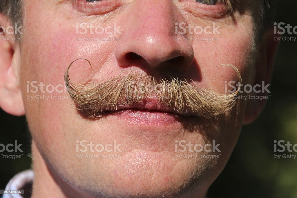 Waxed moustache stock photo