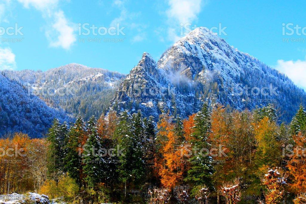 Waxenstein  Bavarian Alps, idyllic Pine trees woodland under snow landscape, majestic alps valley, dramatic Bavaria german Snowcapped mountain range panorama, Berchtesgaden alps, Germany stock photo