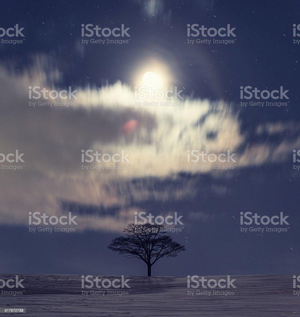 Waxing Moonlight stock photo
