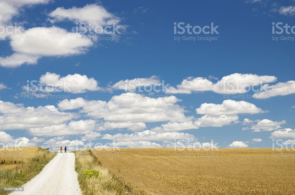 Way Of St James in Palencia stock photo