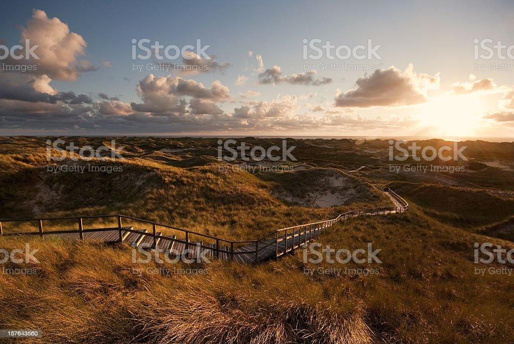 Way through the dunes royalty-free stock photo