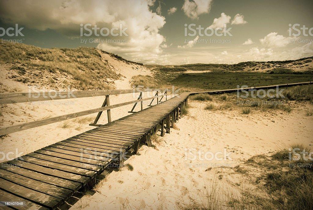 Way through the dunes royalty-free stock photo