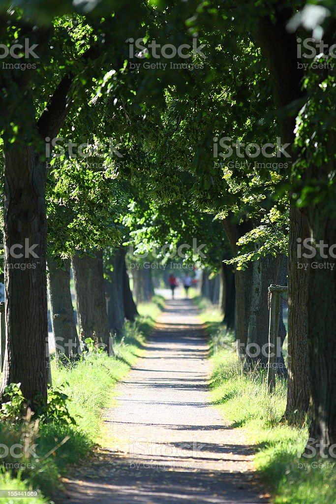 way with trees and two running people in background stock photo