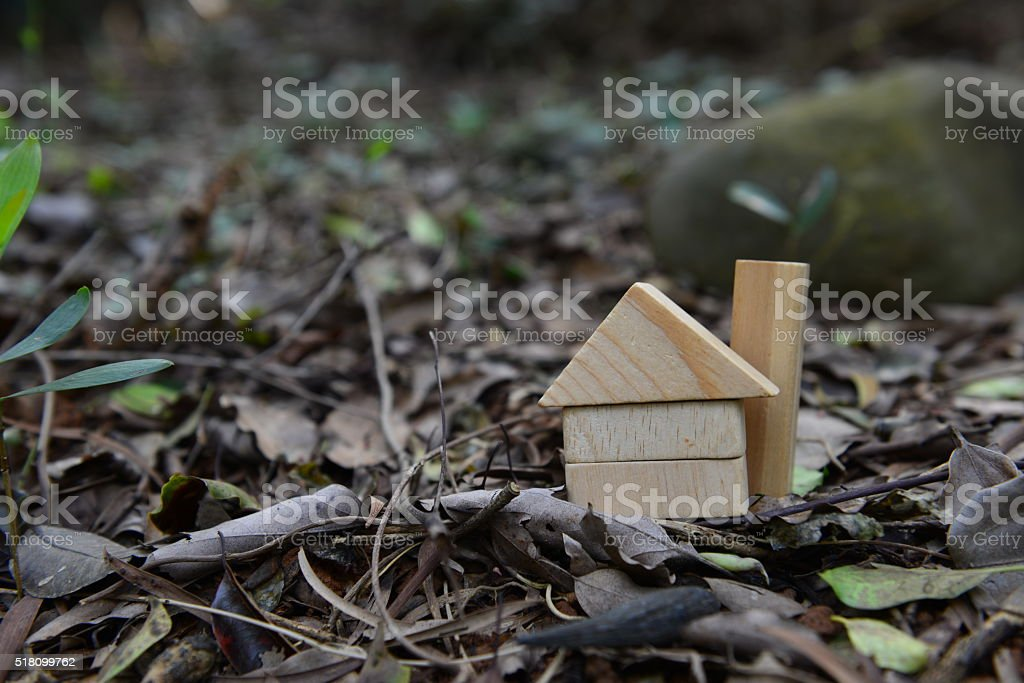 We can afford to buy a house between us . stock photo