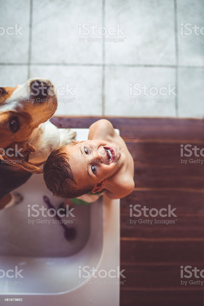 We don't want a bath! stock photo