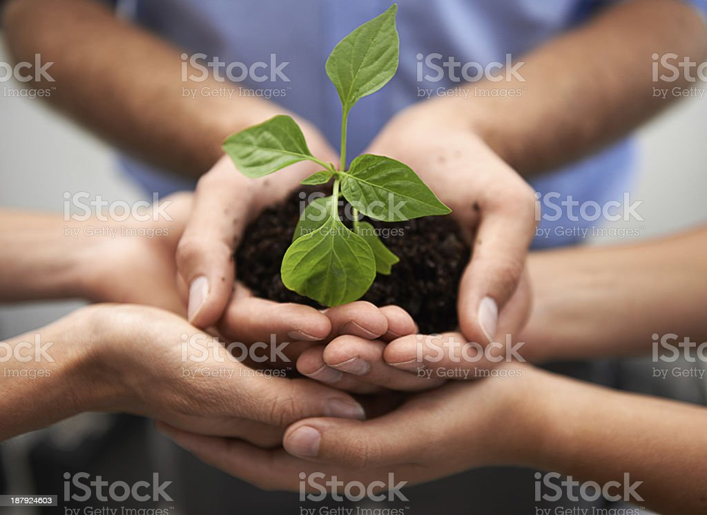 We hold the future of the planet in our hands... stock photo