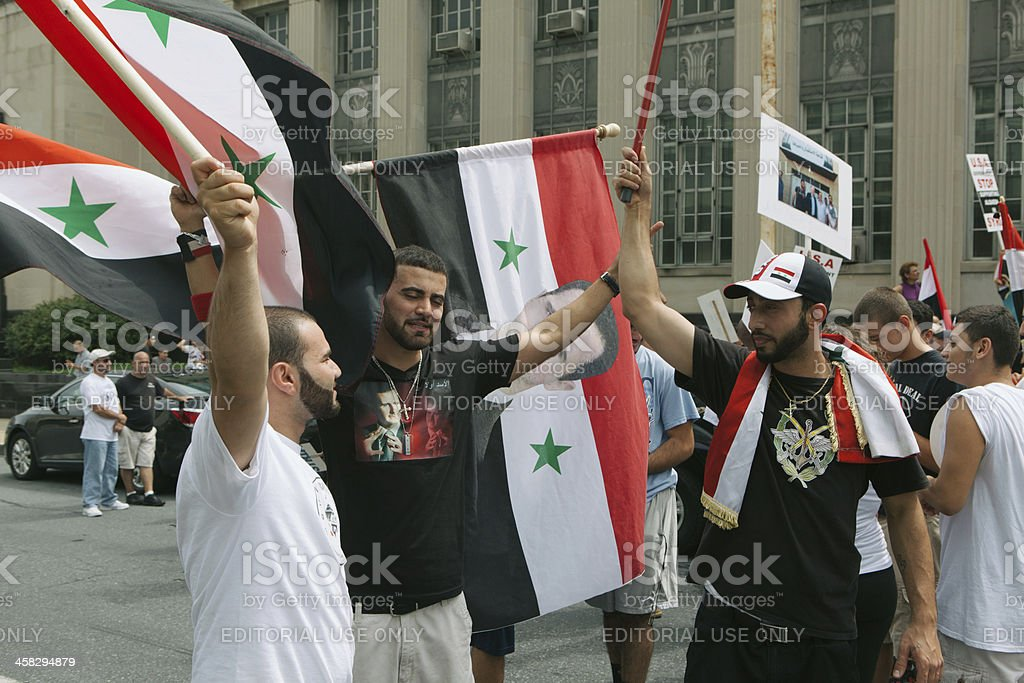 We Support The Syrian Government royalty-free stock photo