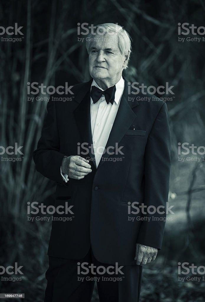 wealthy senior stock photo