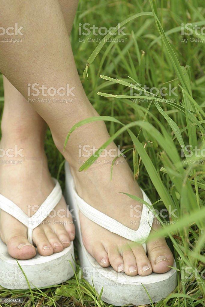 Wearing flip flops. royalty-free stock photo