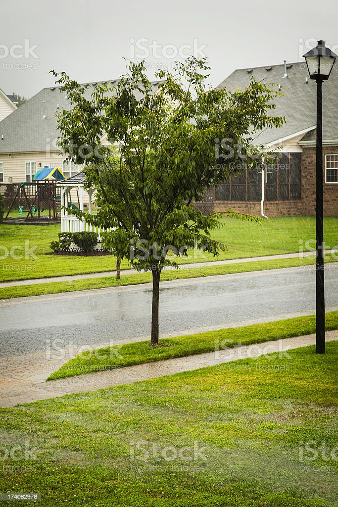 Weather: Torrential Rain During Summer Storm royalty-free stock photo