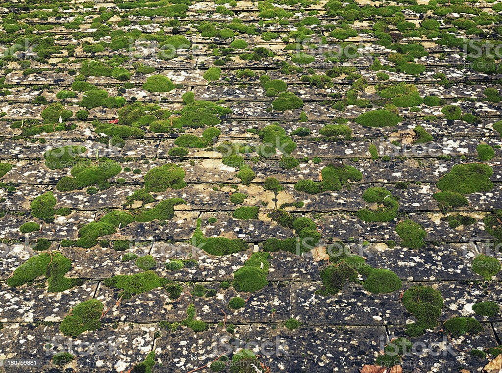 Weathered and Moss Covered Roof Tiles royalty-free stock photo