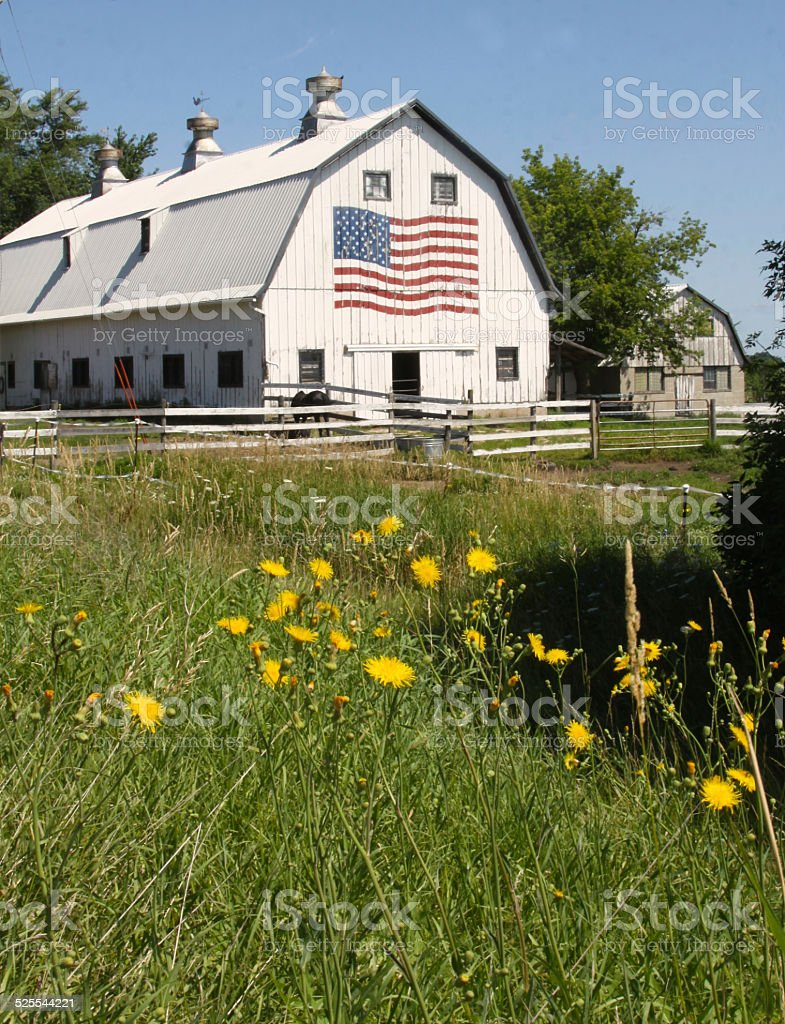 Weathered Barn With American Flag stock photo