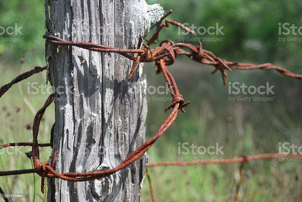 Weathered Fence Post with Barbed Wire royalty-free stock photo