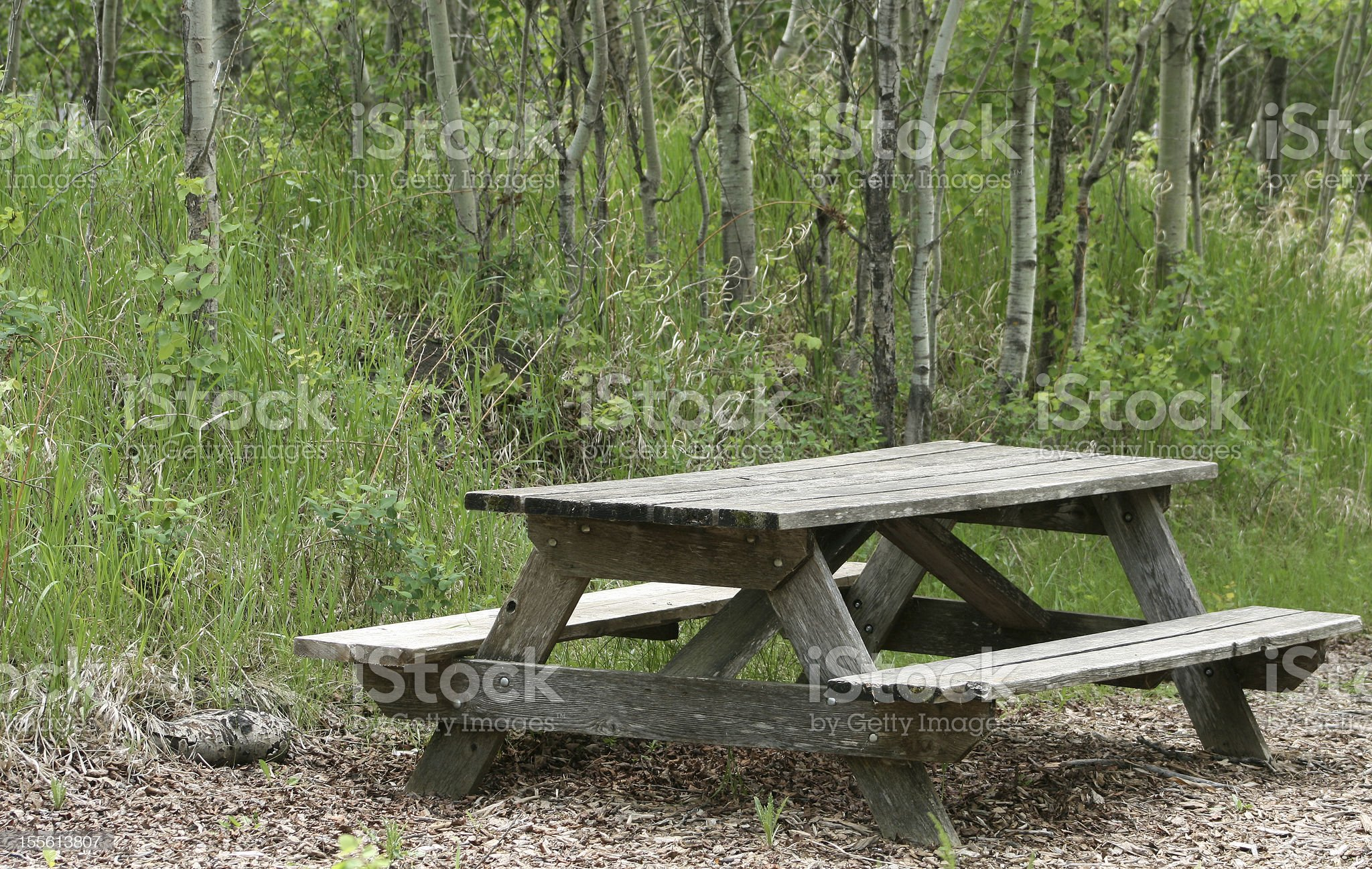 Weathered Picnic Table in a Forest royalty-free stock photo