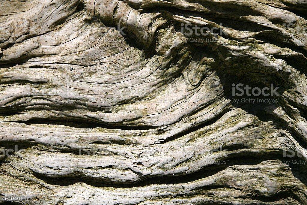 Weathered Wood Grain royalty-free stock photo