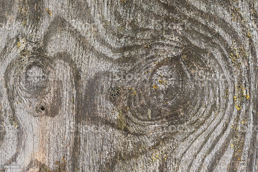 Weathered wooden plate. stock photo