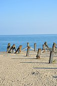 Weathered wooden posts in ground by the sea in portrai