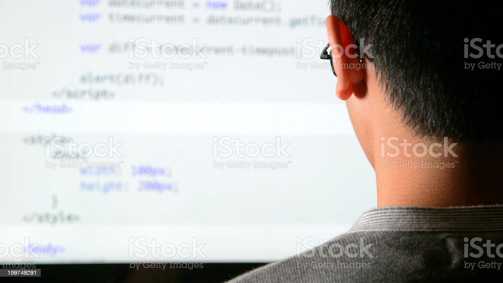 Web Programmer royalty-free stock photo