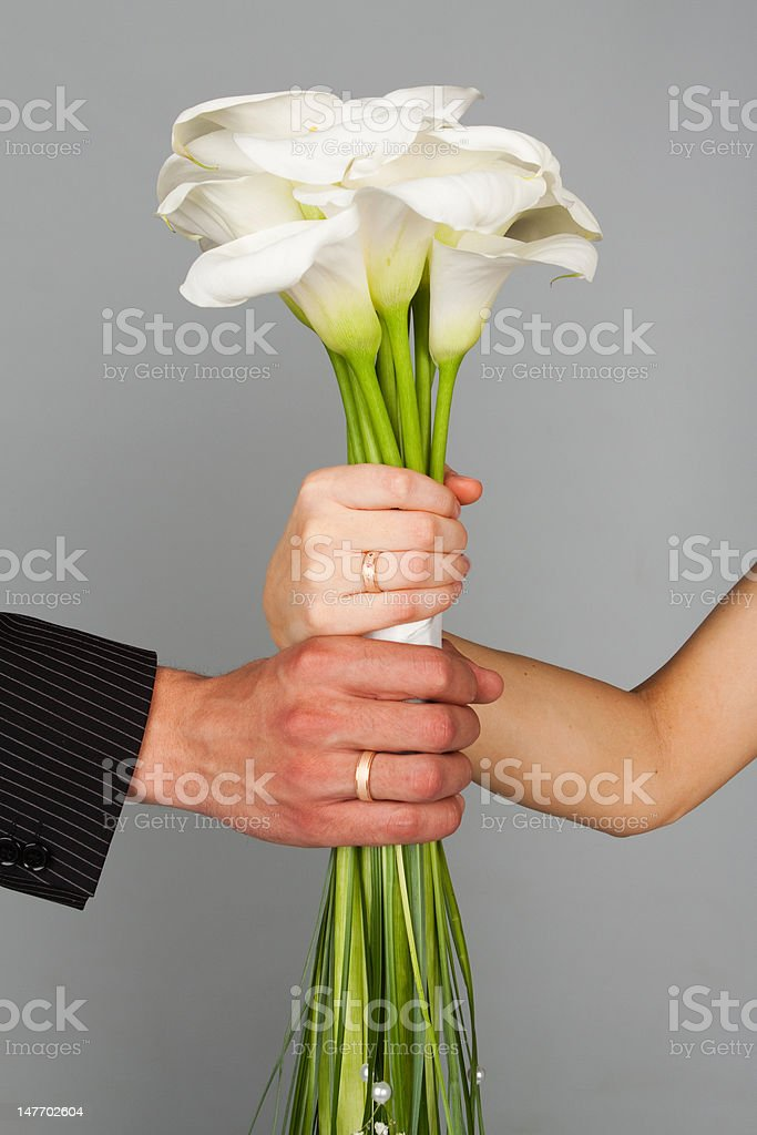 Wedding bands and hands royalty-free stock photo