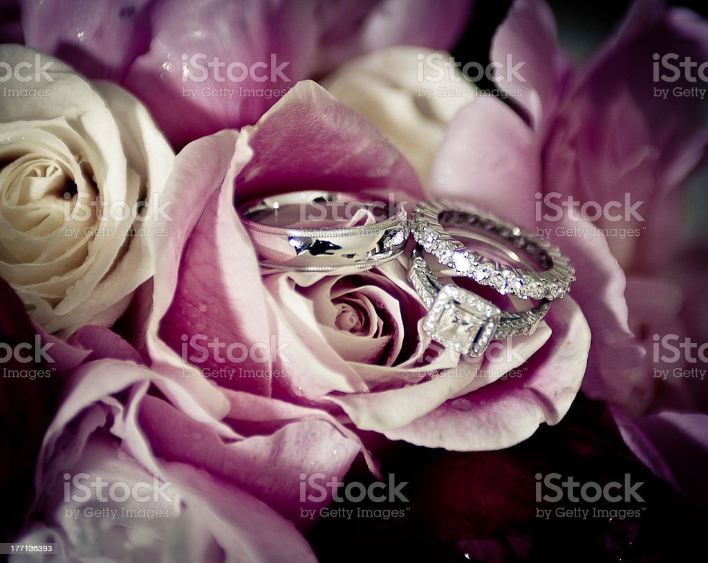 Wedding Bands and roses stock photo