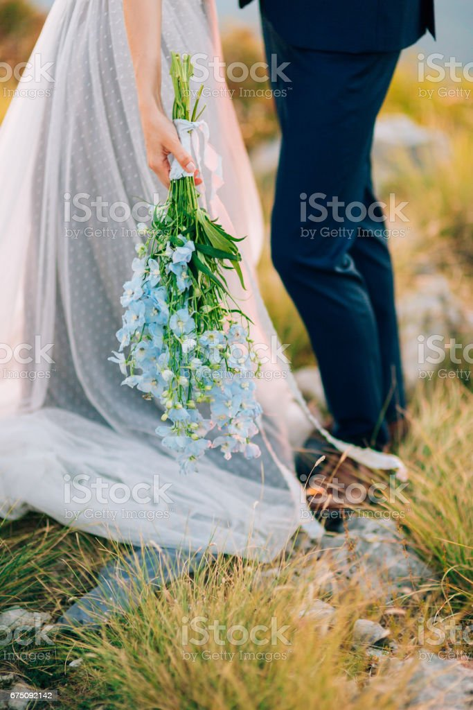 Wedding bridal bouquet of blue Delphinium in the hands of the br stock photo