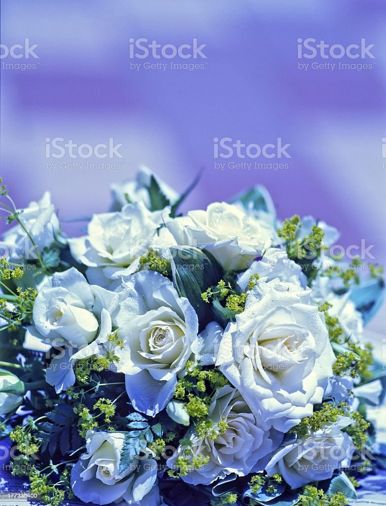 Wedding close up of white bridal bouquet royalty-free stock photo