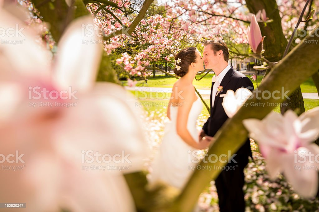 Wedding couple holding hands and kissing royalty-free stock photo