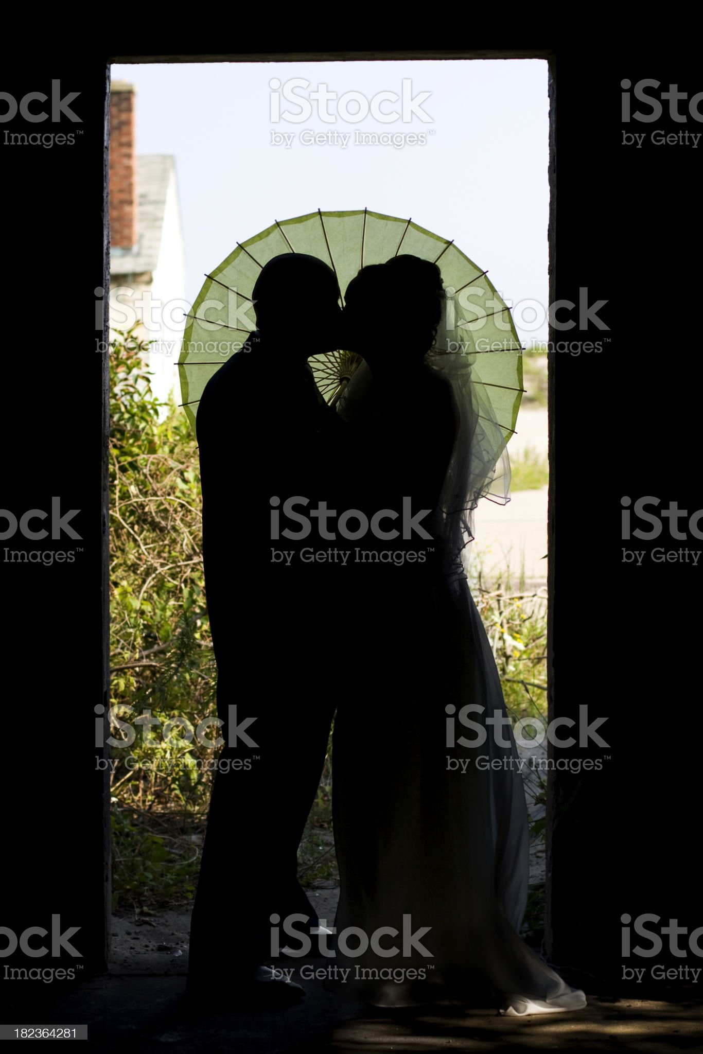 wedding couple kissing royalty-free stock photo