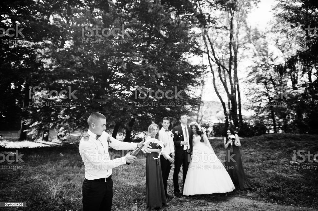Wedding couple with bridesmaids and best mans drinking champagne outdoor. stock photo