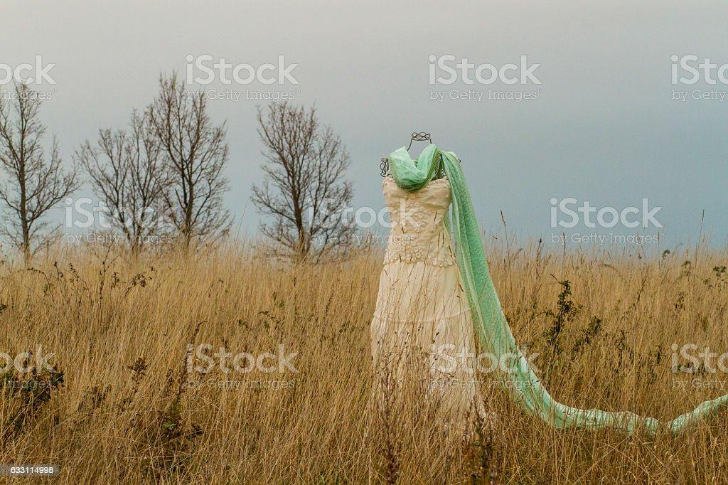 Wedding Dress in a field stock photo