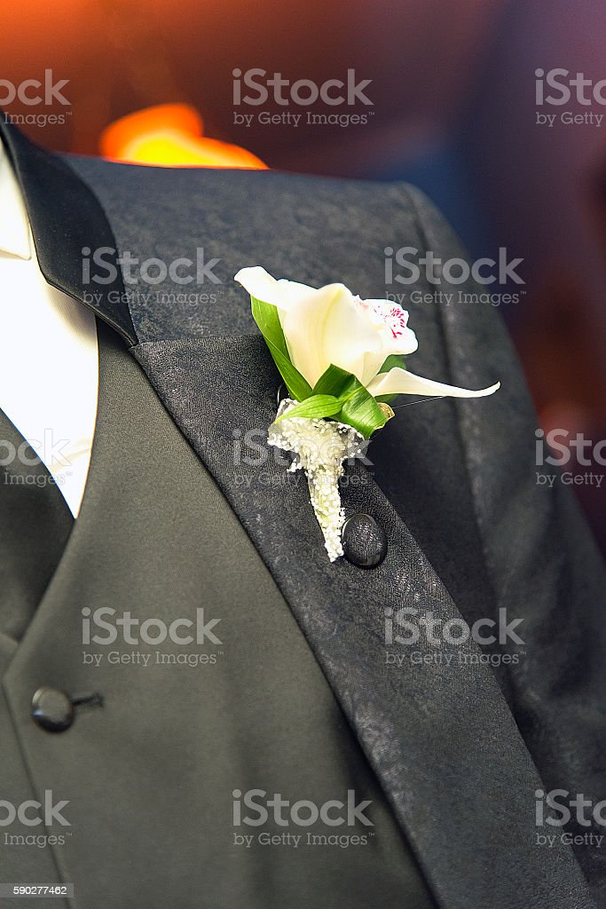 Wedding flower on a Suit stock photo