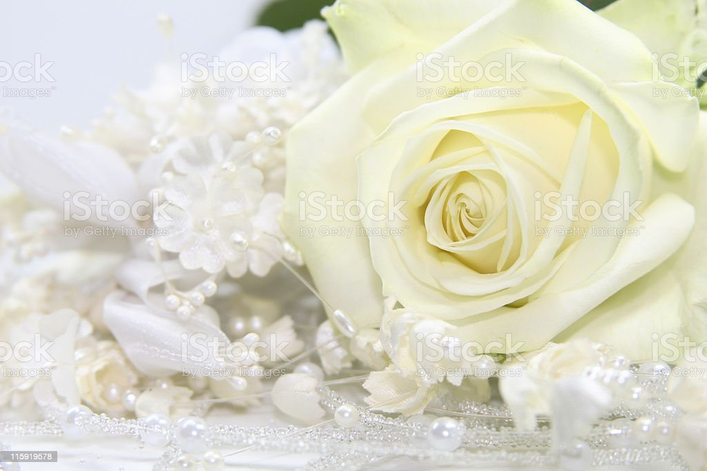 wedding gown fabric with rose stock photo