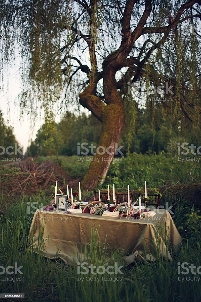 Wedding Head Table Setup Under a Tree royalty-free stock photo