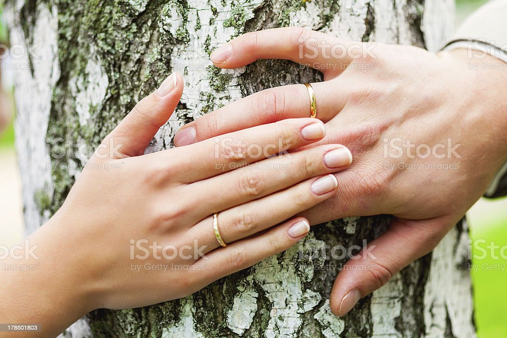 Wedding in the forest royalty-free stock photo