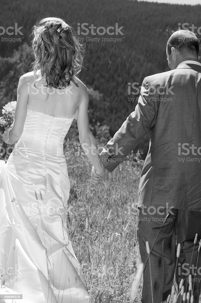 Wedding in the Mountains royalty-free stock photo