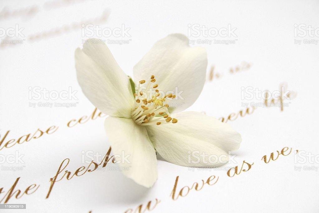 Wedding invitation card royalty-free stock photo