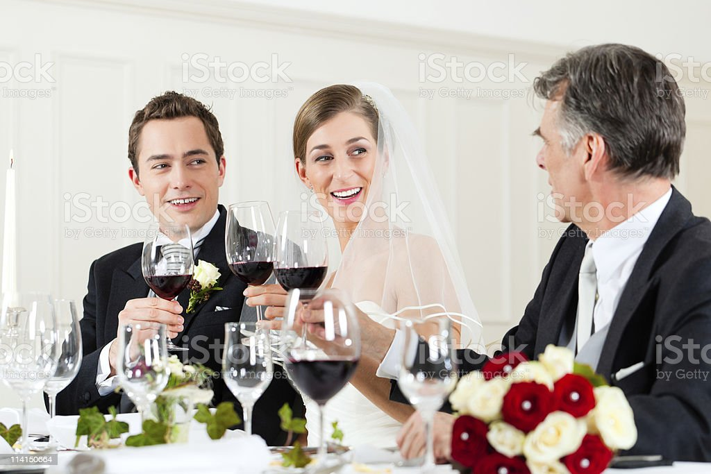 Wedding party at dinner royalty-free stock photo