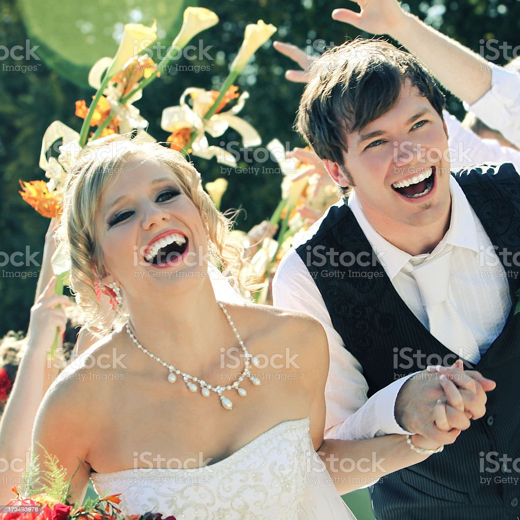 Wedding Party royalty-free stock photo