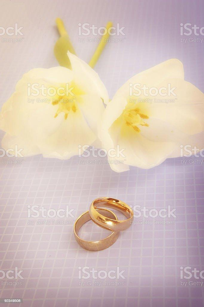 Wedding Possilitites royalty-free stock photo