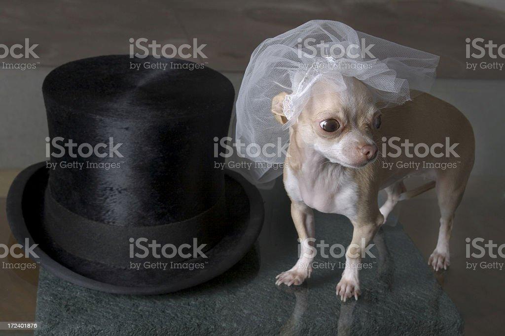 lista para la boda royalty-free stock photo