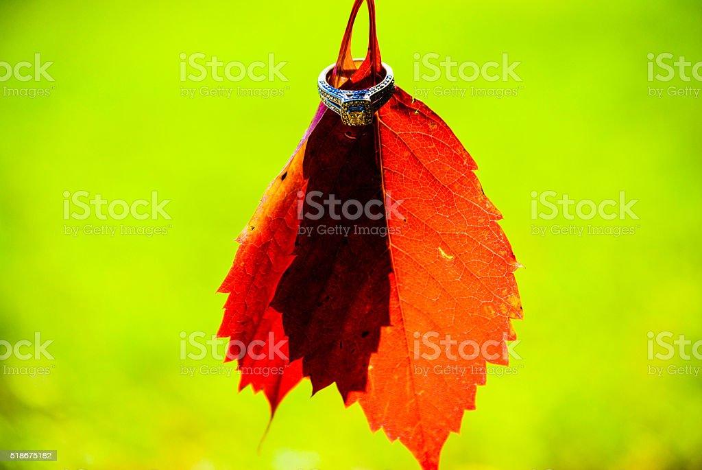 Wedding Ring on Leaf royalty-free stock photo