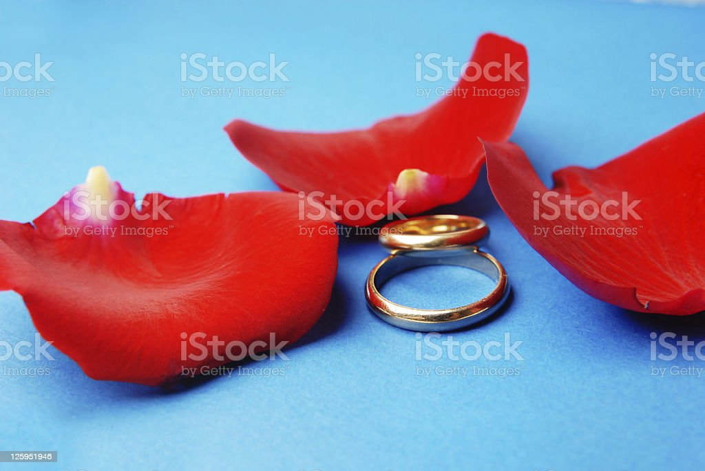 Wedding rings and rose petals royalty-free stock photo