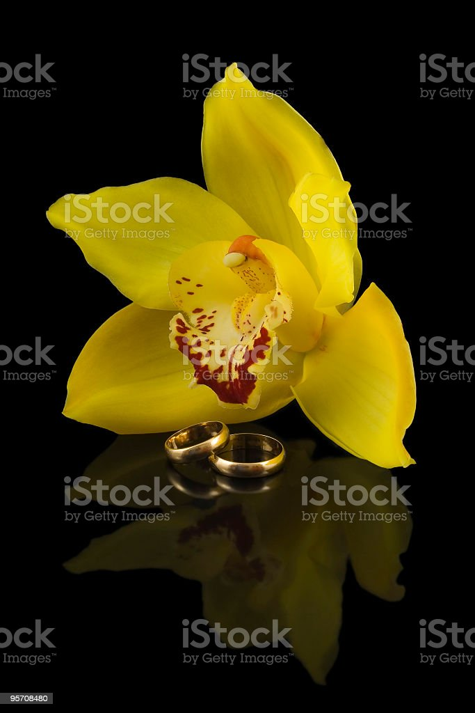 Wedding rings and yellow orchid with reflection royalty-free stock photo