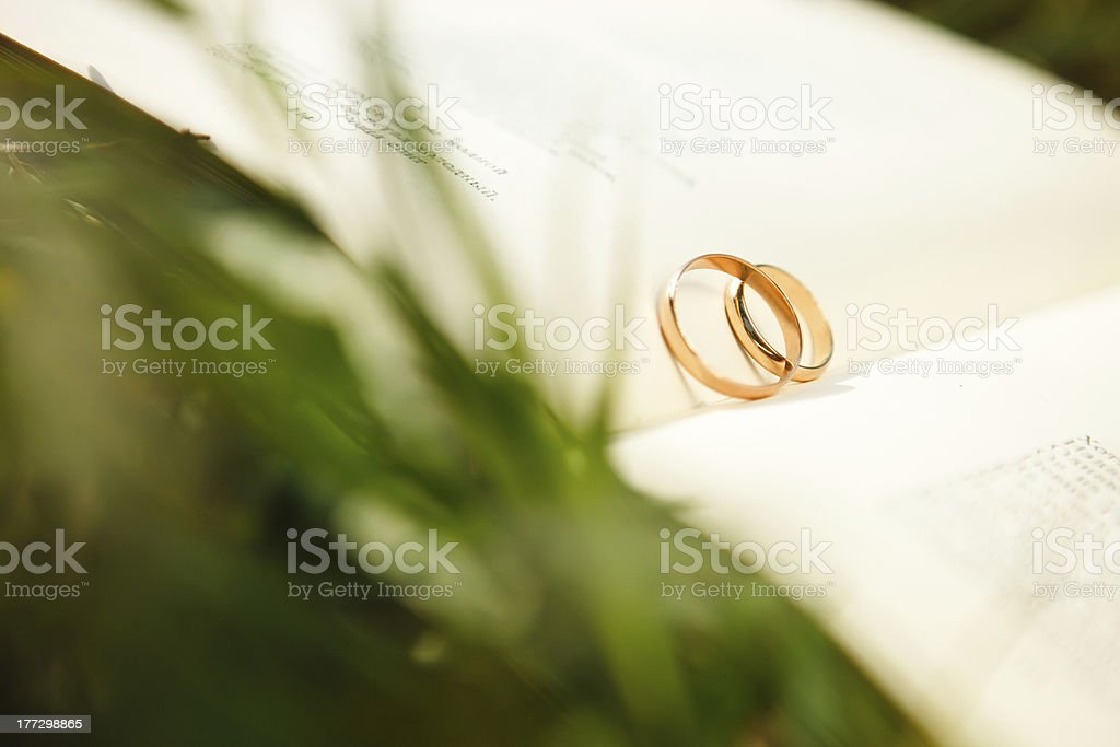 wedding rings in a book on the grass royalty-free stock photo