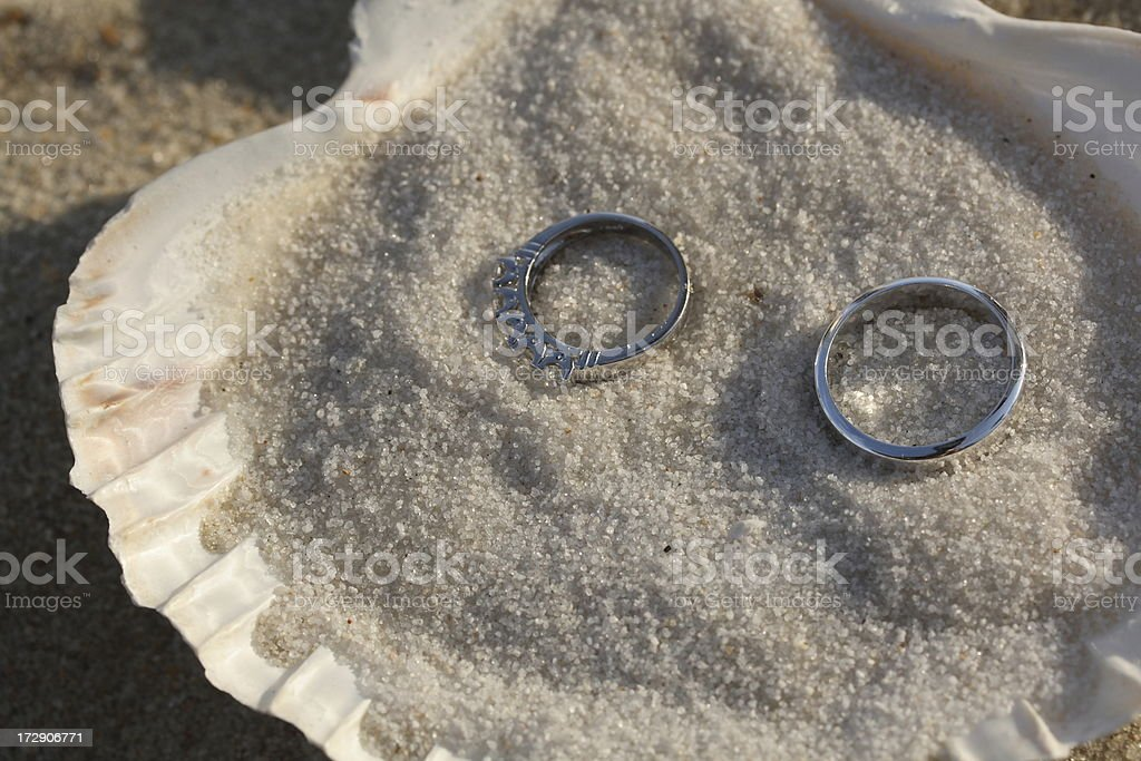 Wedding Rings in Seashell royalty-free stock photo