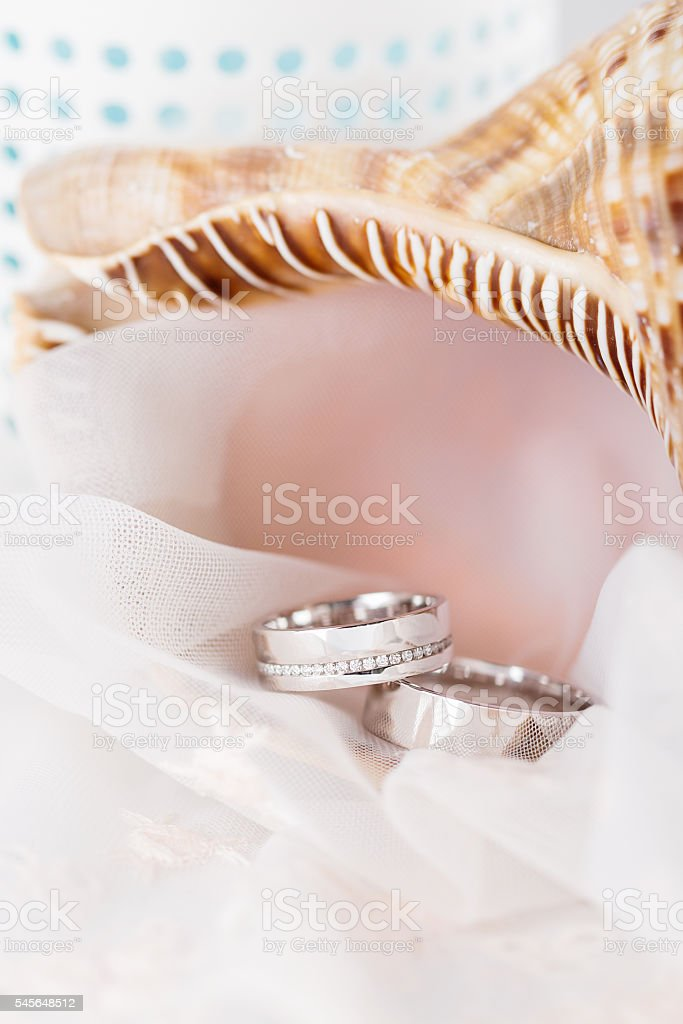 Wedding rings in white gold stock photo